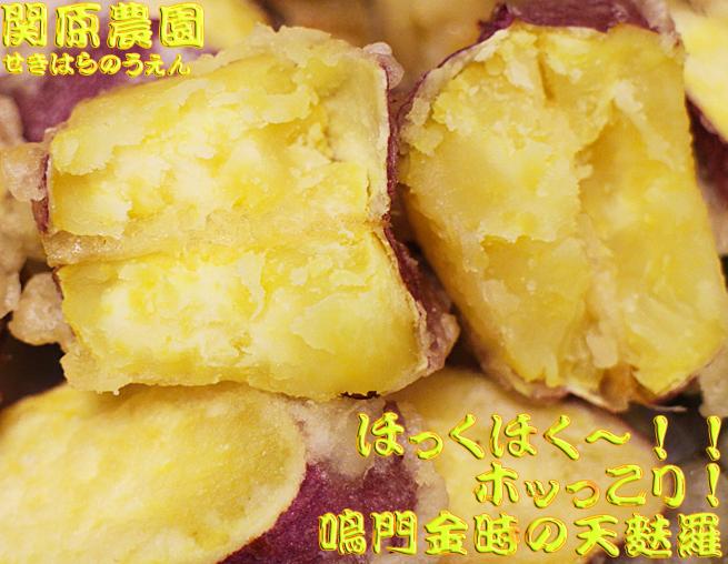 送料無料、鳴門金時(なるときんとき)徳島鳴門名産さつまいもの農園栽培直送販売。格安・激安さつまいも鳴門金時販売のなると金時どっとこむ関原農園の焼芋(やきいも)ふかし芋・天ぷら